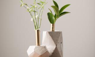 Vasen von Jolie Design mit Resten von LEHA