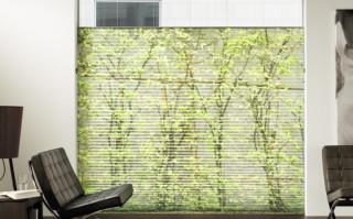 Digital bedrucktes Plissee mit Wunschmotiv eines Kunden