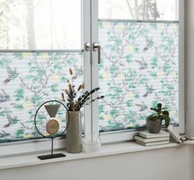 leha-sonnenschutz-plissee-trend-kolibri